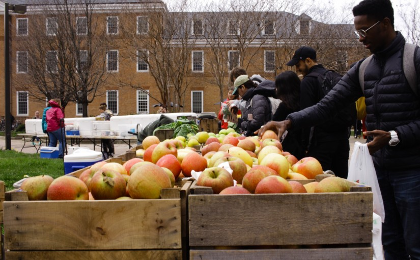 Umd Farmers Market Reopens For Spring Semester In Tawes Plaza Garden The Diamondback