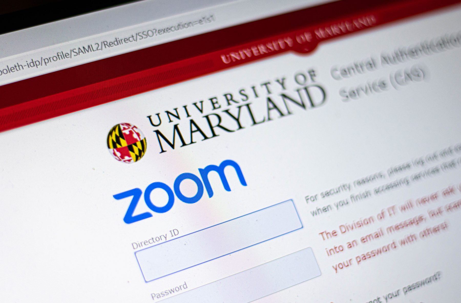 UMD's strong transition to online classes means good things for ...